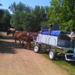 chariot_rando