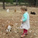 enfant_lapins