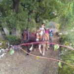promenade_caleche